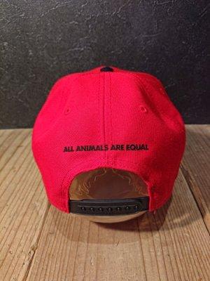 画像3: AA=  PIG SNAPBACK CAP (RD)