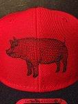 画像4: AA=  PIG SNAPBACK CAP (RD) (4)