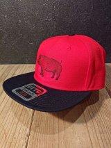 AA=  PIG SNAPBACK CAP (RD)